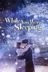 While You Were Sleeping ลิขิตฝันฉันและเธอ ตอนที่ 1-16 (จบ)