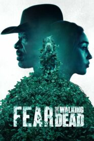 Fear the Walking Dead เฟียร์เดอะวอล์กกิงเดด Season 1-6 (จบ)