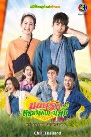 Mon Ruk Nong Pak Ka Yang 2021 มนต์รักหนองผักกะแยง ตอนที่ 1-13 (จบ)