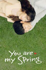 You Are My Spring 2021 เธอคือรักที่ผลิบาน ตอนที่ 1-16 (จบ)