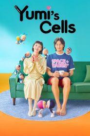 Yumi's Cells 2021 ตอนที่ 1-14 (กำลังฉาย)